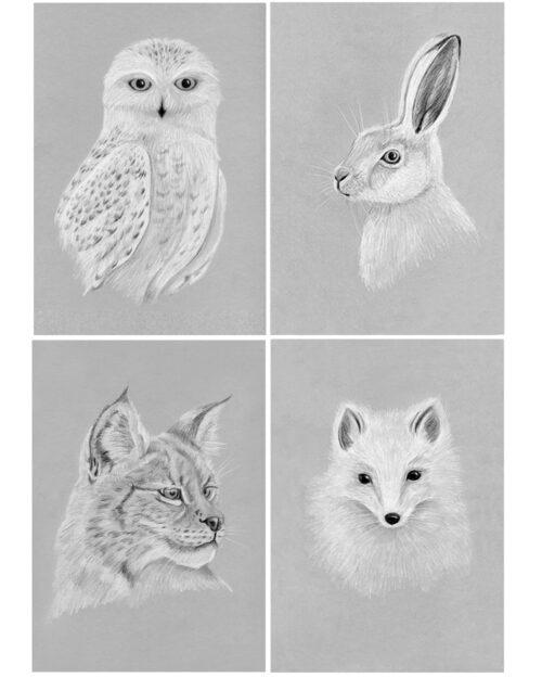 Fyra illustrationer av djur i vinterpäls